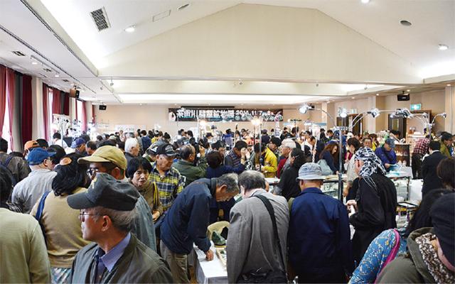 糸魚川翡翠ミネラルフェア